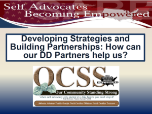 Cover of Developing Strategies and Building Partnerships